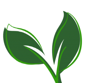 cover 3 leaf